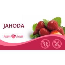 Sorbet Jahoda 2,5l